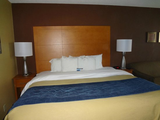 Comfort Inn Plymouth: King room