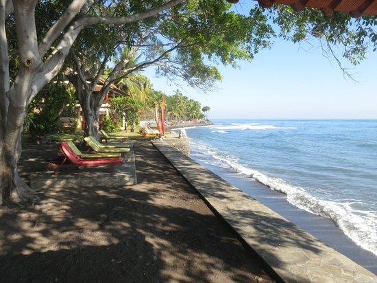 Bali Mandala Resort: Liegewiese