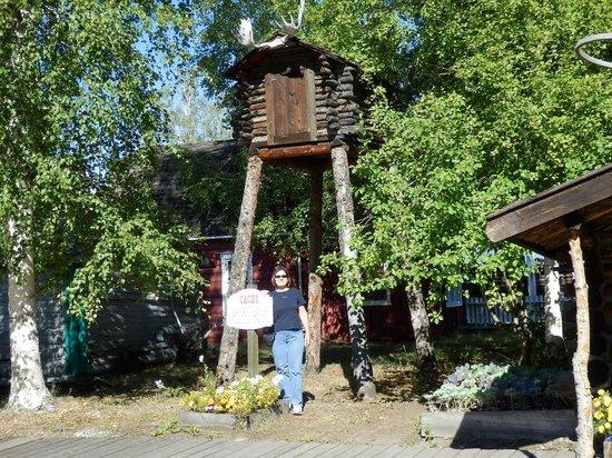 Tree House - Pioneer Park