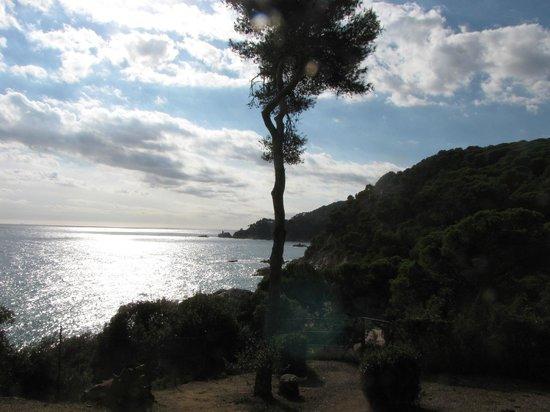 Jardin Santa Clotilde : море