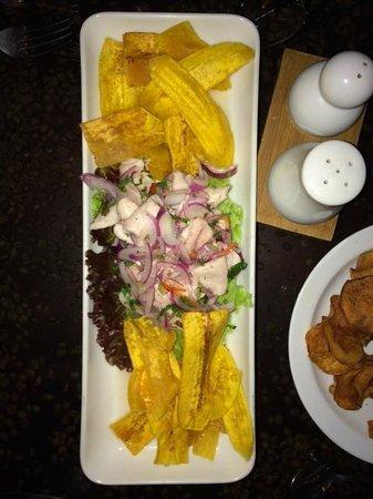Falls Resort at Manuel Antonio : The best Saviche