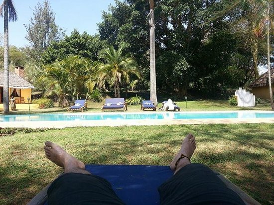 Arusha Safari Lodge: Relaxing at the pool