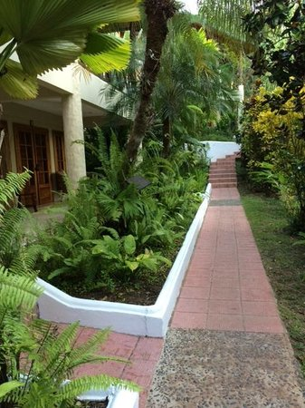 Falls Resort at Manuel Antonio : Walkways to Rooms