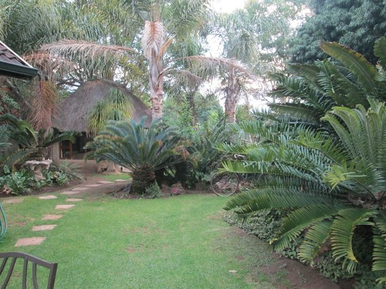 Airport Modjadji Guesthouse: garden