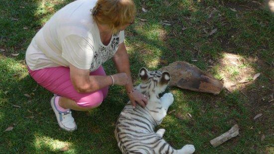 Cango Wildlife Ranch: maak je maar eens mee
