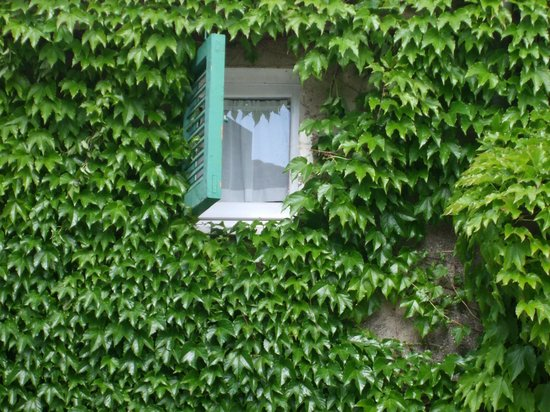Borgo Cenaioli B/B Locanda & Residence di Campagna: .particolare