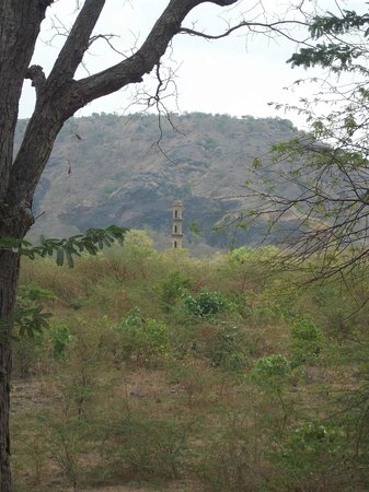 Champaner-Pavagadh Archaeological Park: single guard tower