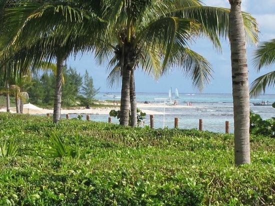 Pure Mareazul: praia