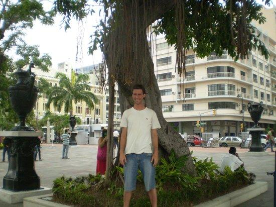 Botanical Garden of Guayaquil: Jardin botanico de Guayaquil