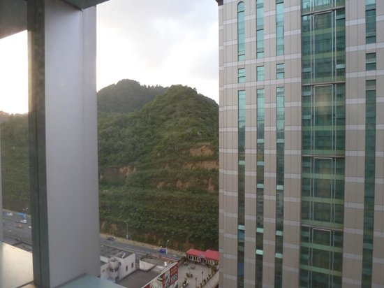 Howard Johnson Plaza Guiyang : View from front room across to the park