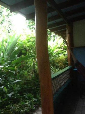 Hotel Guarana : vista desde la habitación