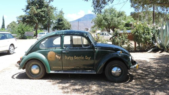 The Dung Beetle Bar at Barrydale Backpackers: Perhaps their courtesy car for over-indulged customers?