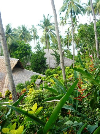 Coco Beach Island Resort : The view from the hillside native huts