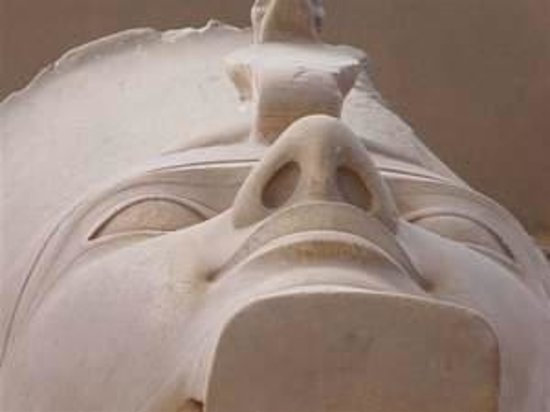 Memphis Museum: The Head of the Colossus of Ramses II