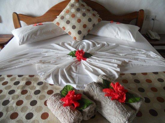 Colibri Guest House: room 4