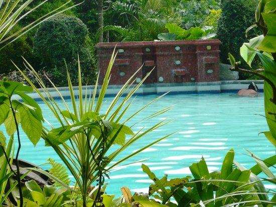 Coco Beach Island Resort : Silent pool