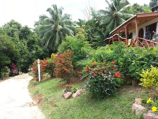 Colibri Guest House: garden 5