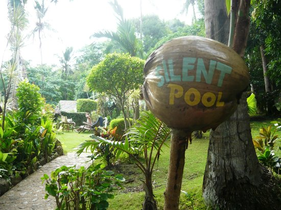 Coco Beach Island Resort: The Silent Pool is up in the hills