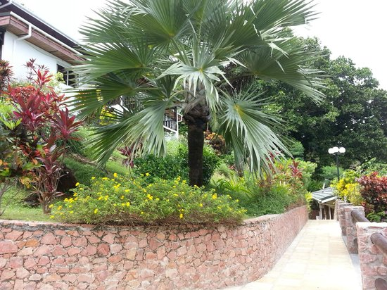 Colibri Guest House: garden 4