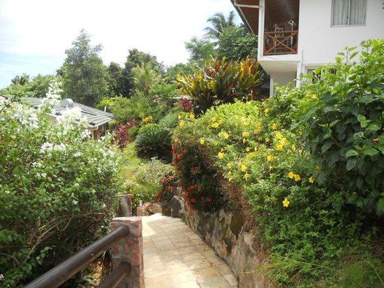 Colibri Guest House: garden 3