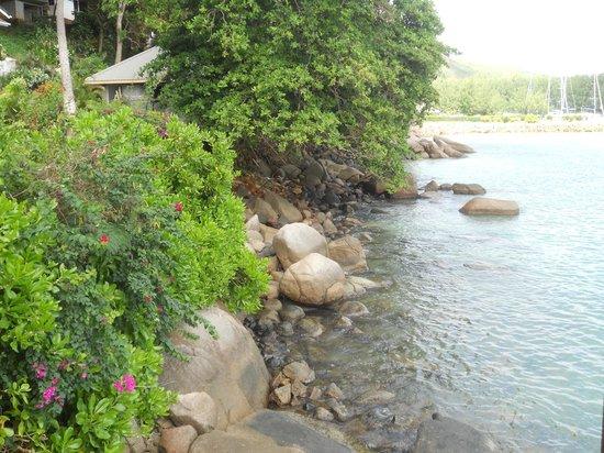 Colibri Guest House: view 2