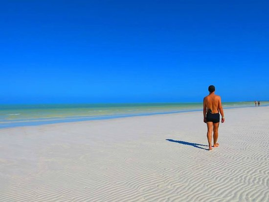Holbox Hotel Casa las Tortugas - Petit Beach Hotel & Spa: La spiaggia di fronte ...