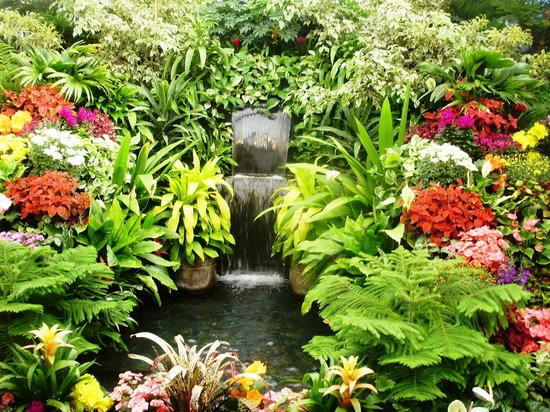 Butchart Gardens: Plantas na estufa