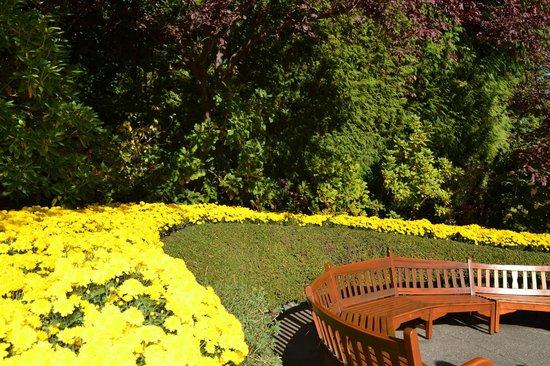 Butchart Gardens: Muitos tipos de flores