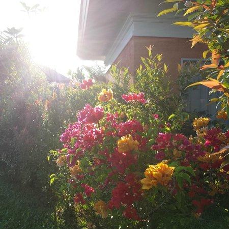 Beyond Resort Khaolak: Lichtstimmung