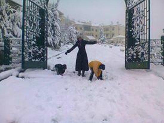 Ain Draham, Tunisia: janvier 2013