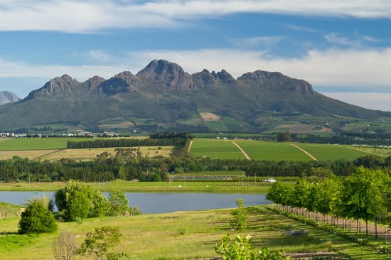 Asara Wine Estate & Hotel: Area view from Asara Wine State.