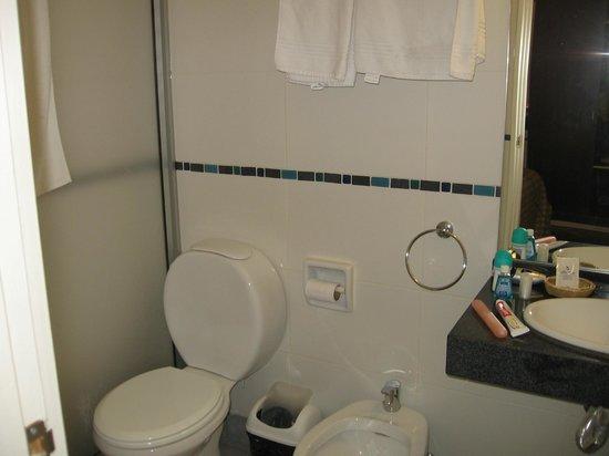 Hotel América: Banheiro bom (pequeno problema no box).