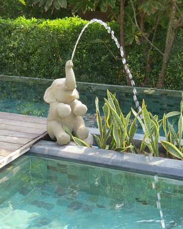 Siripanna Villa Resort & Spa: Pool area