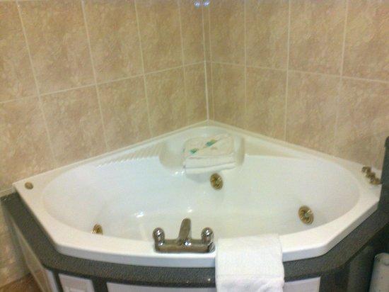 Carrickdale Hotel : 5