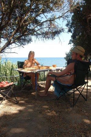 Bagheera Naturist Holiday Resort : Emplacement Camping Bagheera