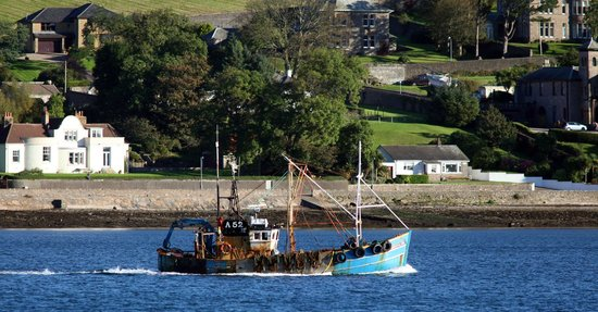 Grammar Lodge Guesthouse: Campbeltown Harbour