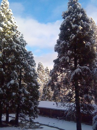 Narrow Gauge Inn : Finally Snow 1.31.14