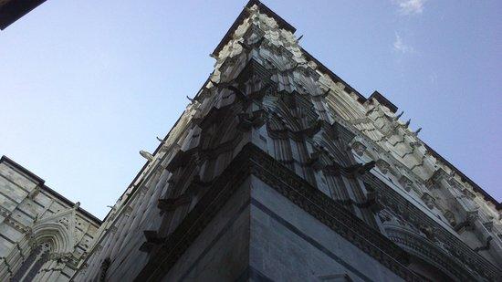 Cripta del Duomo di Siena : particolare del duomo