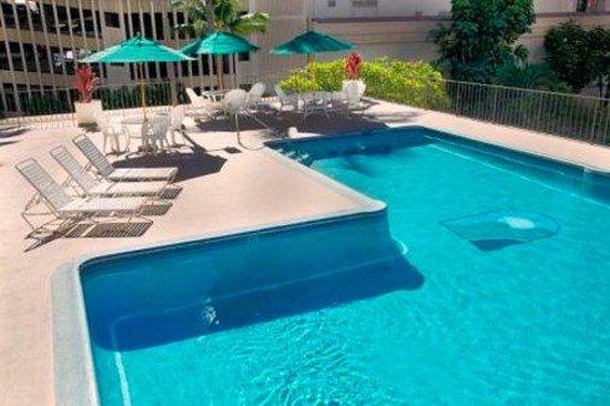Waikiki Resort: Pool