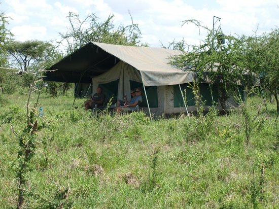 Serengeti Wild Camp: Our tent!