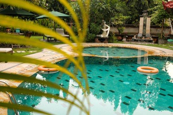 Sukun Bali Cottages : Бассейн