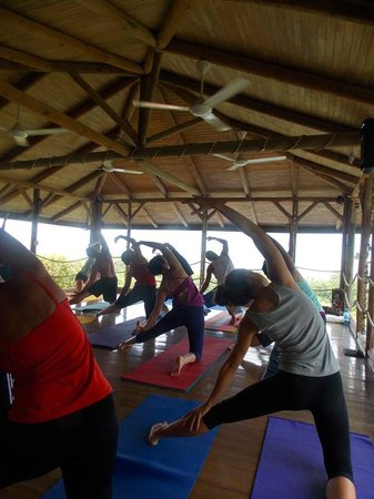 Horizon Yoga Center & Tea House