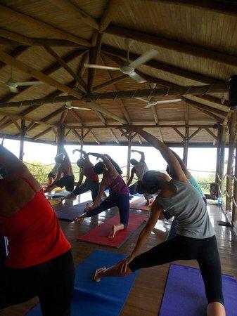 Horizon Yoga Center & Tea House: Morning Yoga!