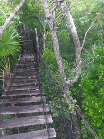 Hotel el Moro: Bird watching Trail just outside of PM