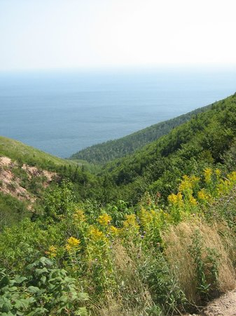 Cabot Trail : Sea level to Here in Just a Few Km
