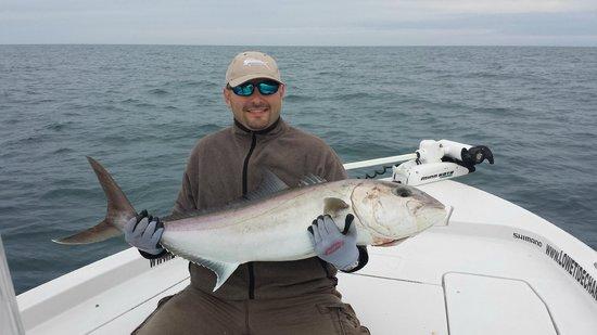Lowe Tide Fishing Charters: Huge Amber Jack