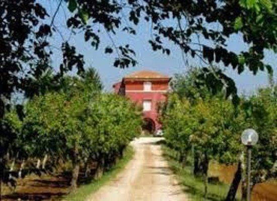 Agriturismo Villa Clementina: Bellissimo casale immerso nelle campagne coresi