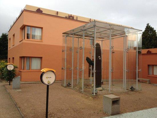 Disney's Hotel Santa Fe : Extérieur de l'un des batiments avec son cactus à l'abri du froid
