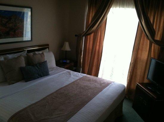 Habitat Suites Hotel: My room
