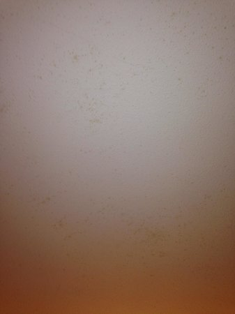 Kn Columbus Aparthotel: Damp on bedroom roof